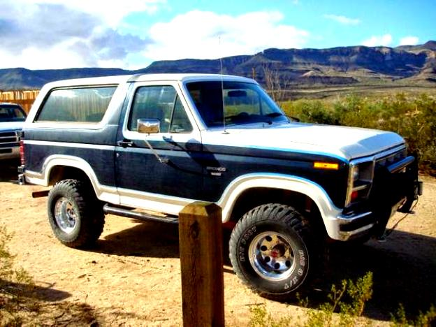 Ford Bronco 1980 #13